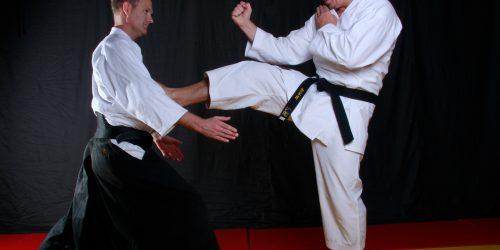tora-dojo-karate-kick